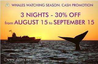 Whale Watching Season Cash Promotion Deals
