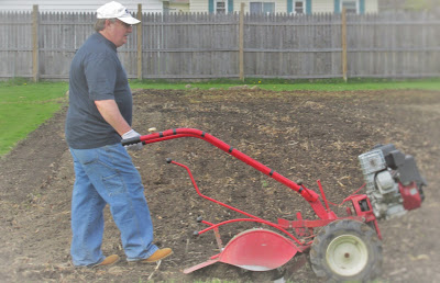 Husband tilling the vegetable garden