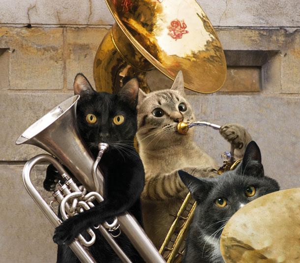 Kucing sertai brassband