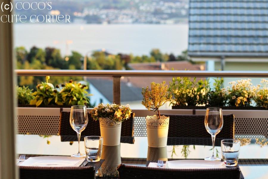 Lake view Lake of Zurich