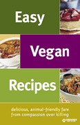 Free Easy Vegan Recipe Booklet