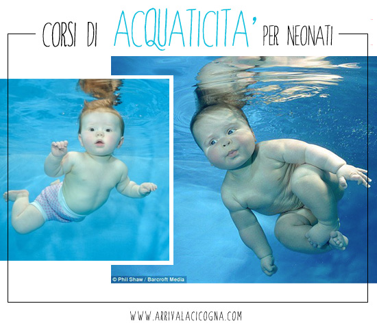 acquaticita in piscina per neonati