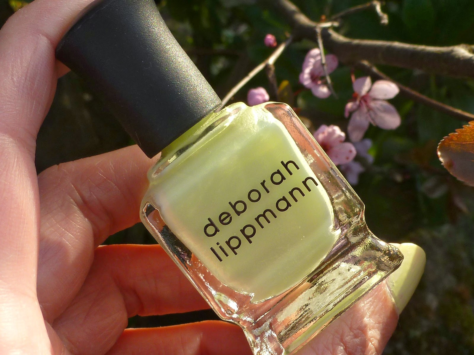 A picture of Deborah Lippmann - Spring Buds