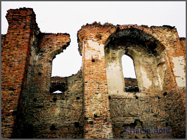 ruine cetate slimnic