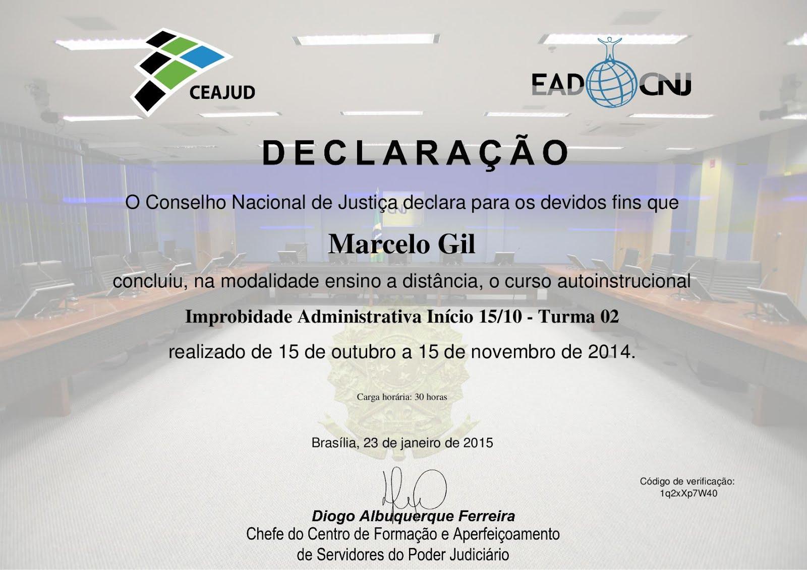 DECLARAÇÃO DO CONSELHO NACIONAL DE JUSTIÇA CONCEDIDO À MARCELO GIL / 2015