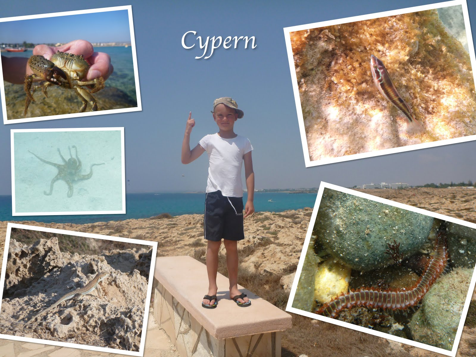 resa till cypern ud