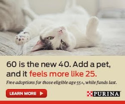 Pet Adoption Program for Those 55 Plus