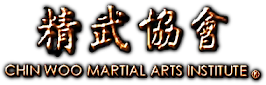 Chin Woo Martial Arts Institute:  Kung Fu Wing Chun e Tai Chi em Recife