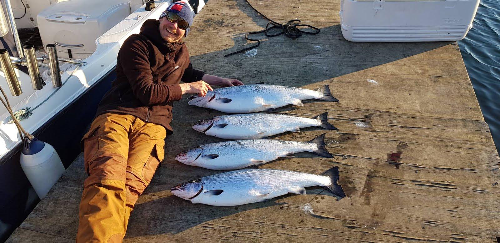 Østersjøens Sølv. 6 - 11 kg