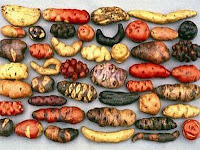 seguridad alimentaria agricultura Perú Fernando Eguren