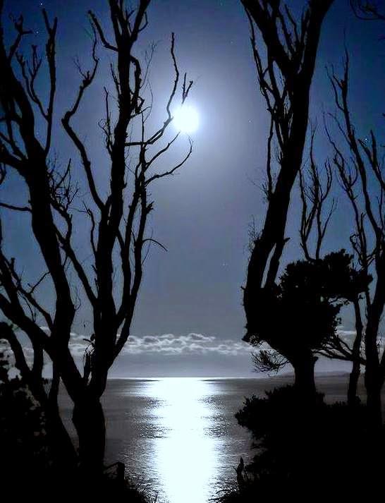 Malam Masa Istirehat, Tidur Mengikut Sunnah