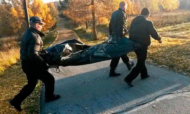 Тела двух женщин обнаружены в перелеске Сергиев Посад