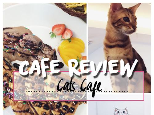 CAFE REVIEW : CATS CAFE, JOHOR