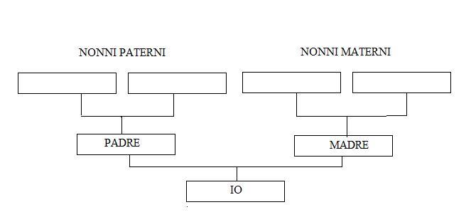 Souvent Il tuo Albero Genealogico: Ricerca genealogica per quarti SO29