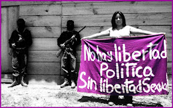 No hay libertad política sin libertad sexual