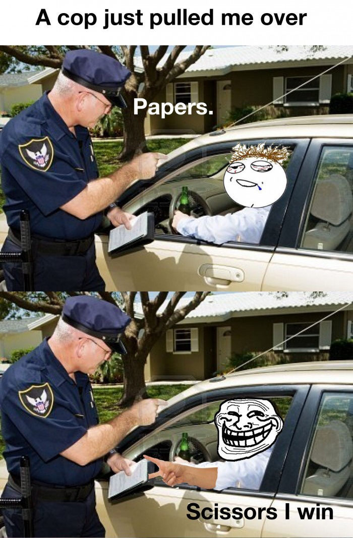 A Cop Asking For Papers - Totally Worth It