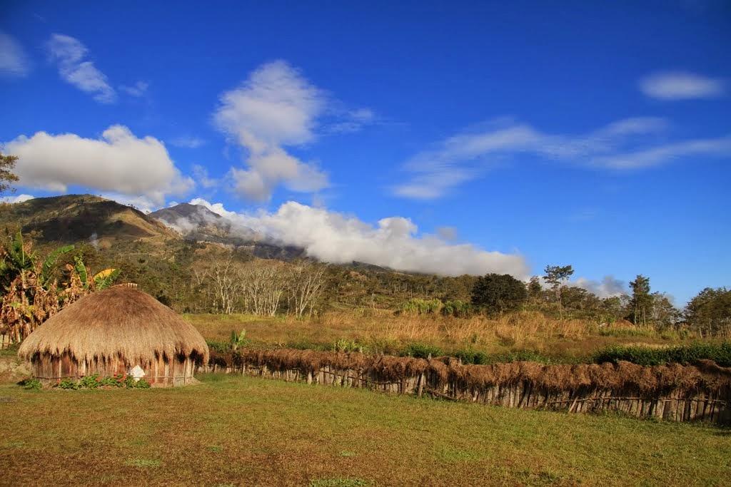 Rumah Adat Papua - Honai