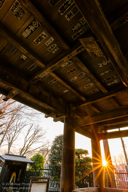 お寺の前にある山門を潜ろうとすると綺麗な夕陽が照らしていたので写真を撮りました