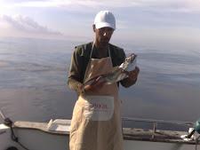 Pescada de Embarcada