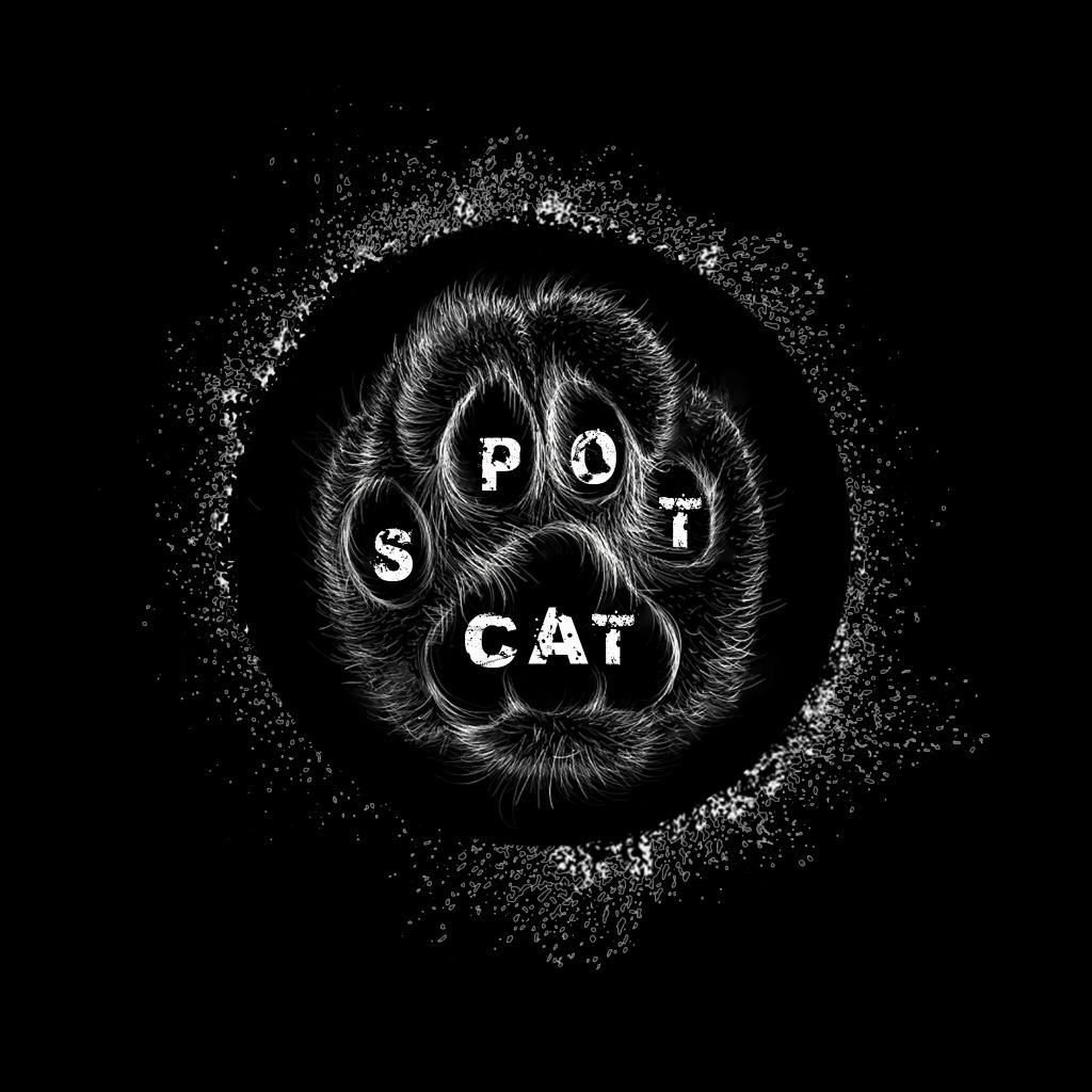 ... SpotCat ...