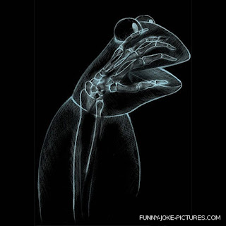 Funny X-Ray Photo Images Muppets