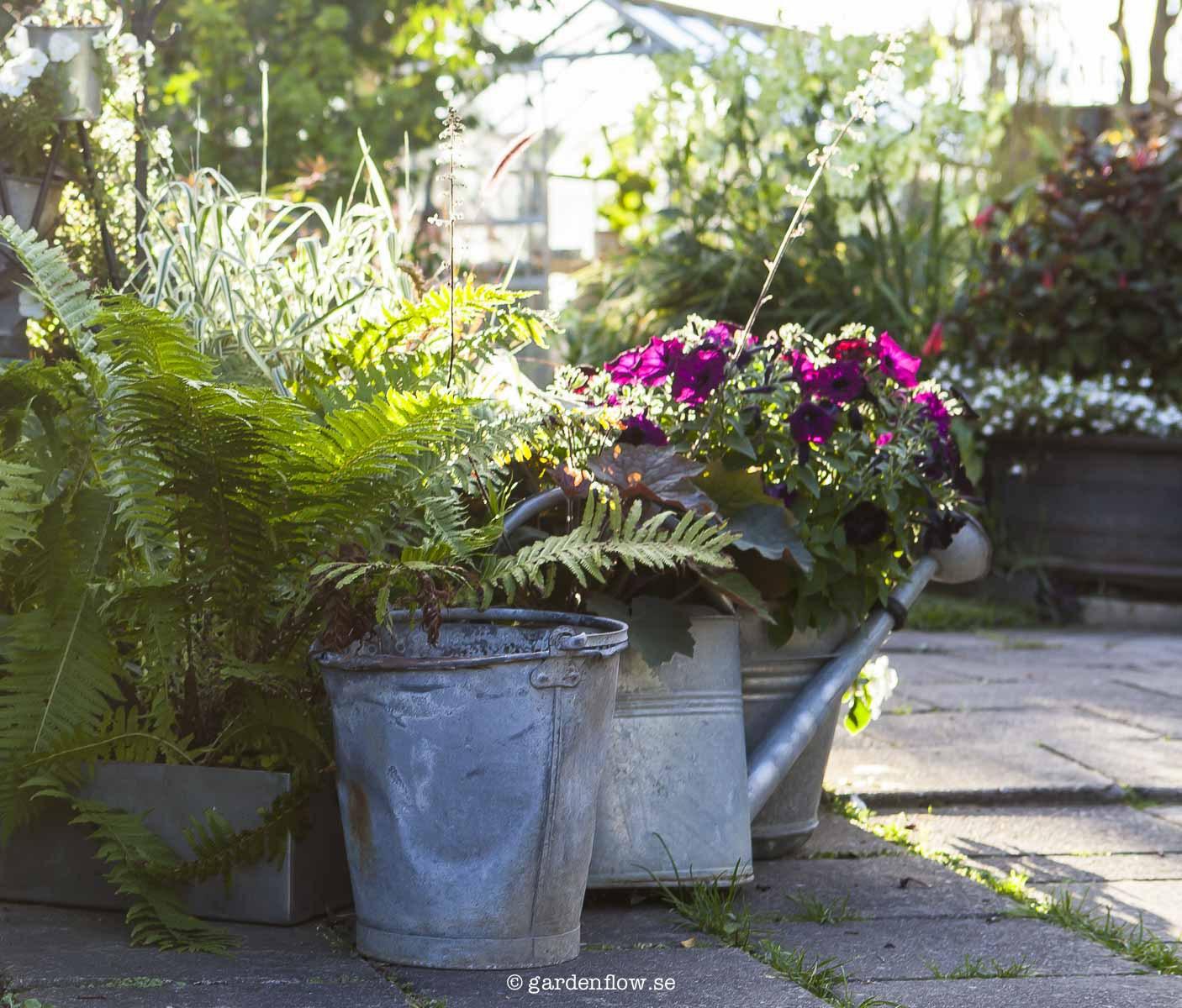 Gardenflow skriver om Sanda Cottage
