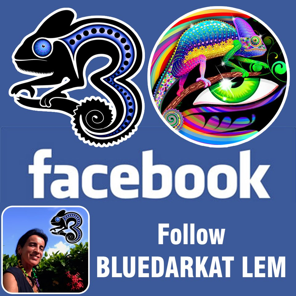 The ChameleonART [a.k.a. BluedarkArt] Facebook