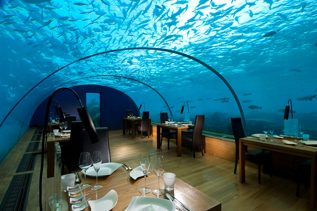 Underwater adventures at conrad maldives rangali island for Hotel conrad maldivas islas rangali