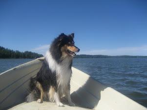 Veneessä Vesijärvellä