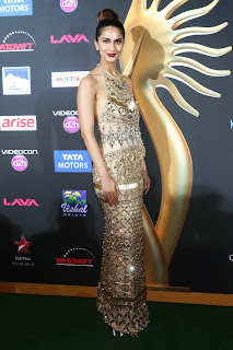 Vaani Kapoor looks stunning in skin colored Gown at IIFA Awards 2014 3.jpg