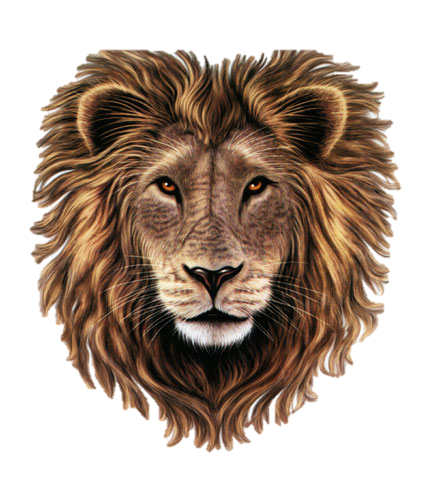 lion heart 1,704 followers, 30 following, 618 posts - see instagram photos and videos from lion heart (@lion_heart_accessory.