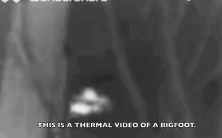 Sasquatch Thermal Washington