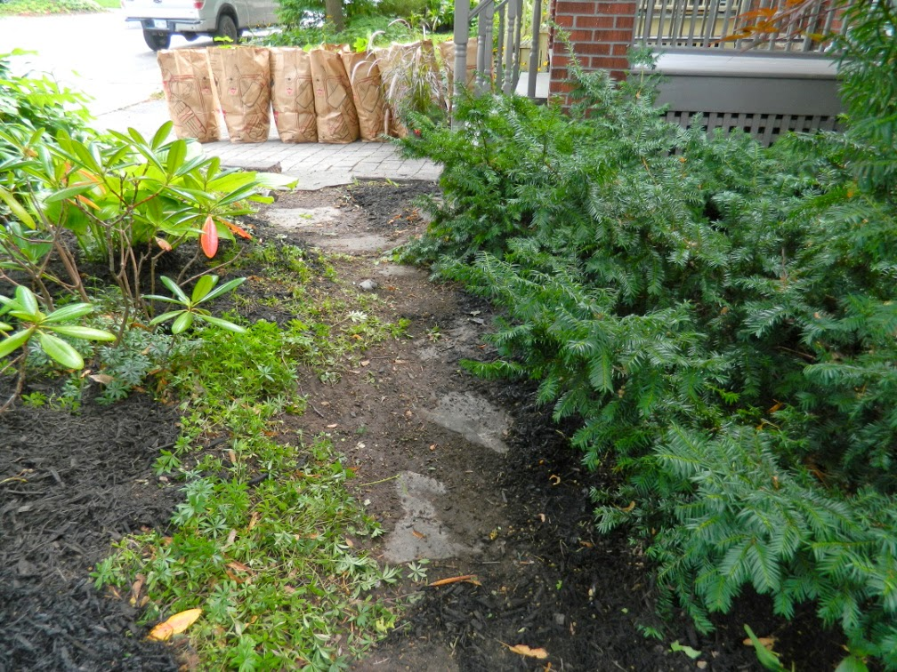 Davisville Toronto garden clean up after Paul Jung Gardening Services
