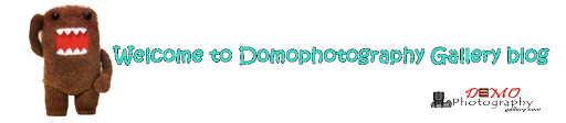 Domophotography Gallery.com