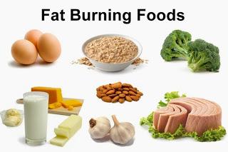 Makanan Tinggi Protein Untuk Diet Harian yang Menyehatkan
