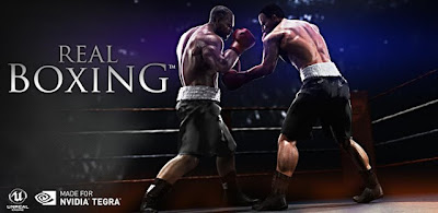 Real Boxing™ v1.0