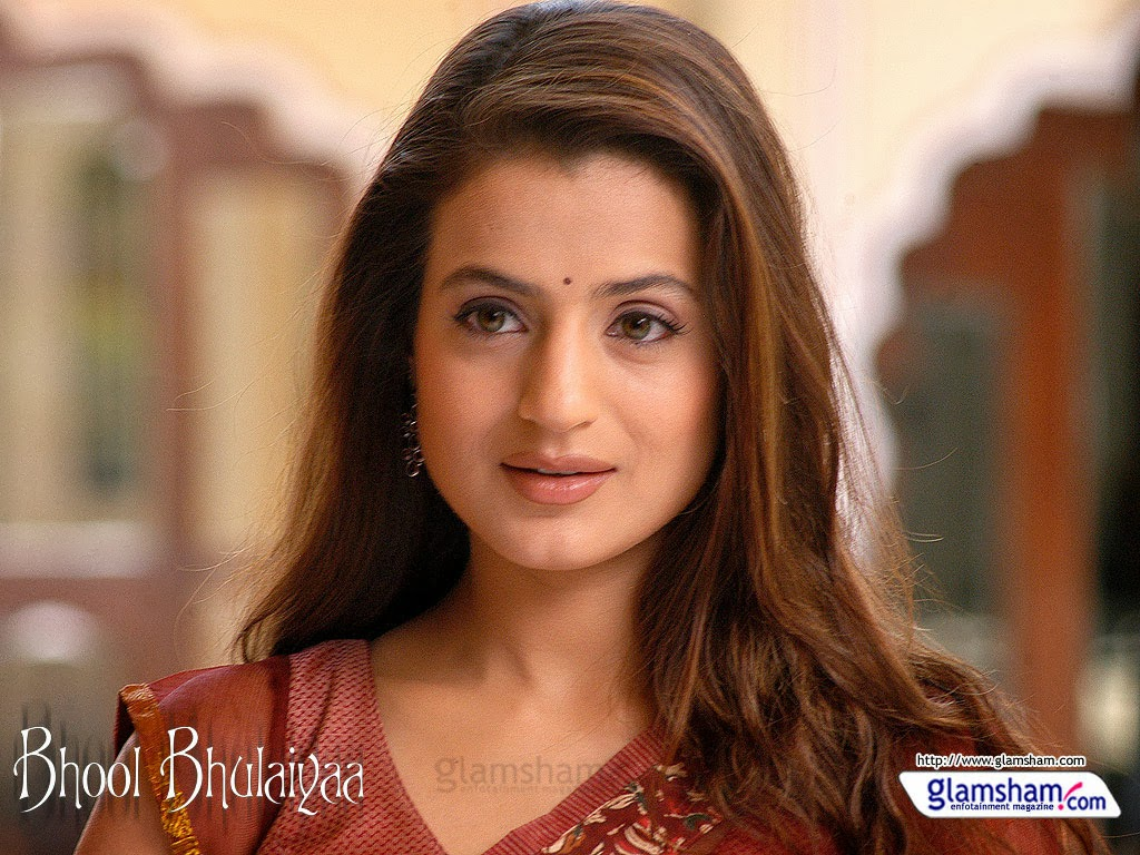 amisha patel wallpaper/amisha patel beautiful wallpaper/amisha patel
