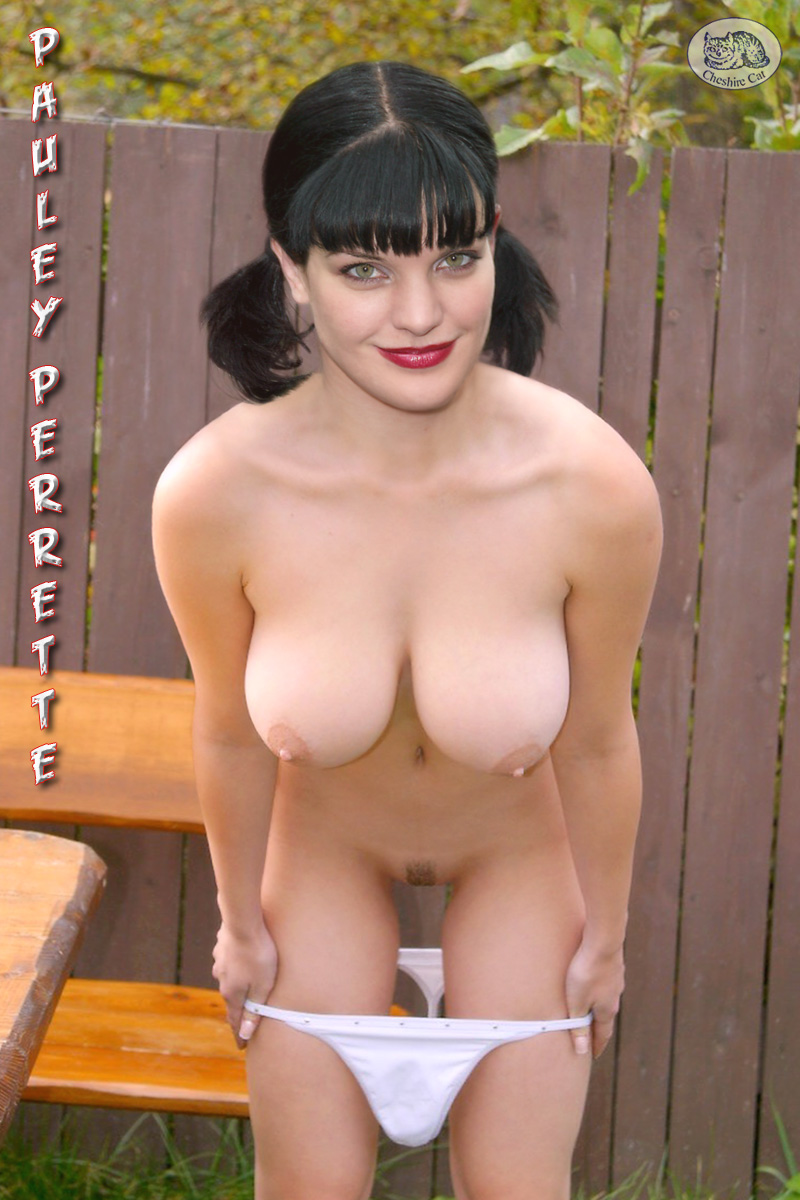Pauley Perrette Fake