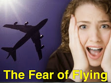 """""""Pteromehanophobia"""" Otherwise Known as """"The Fear of Flying"""""""