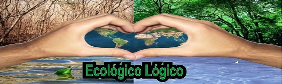 Ecológico Lógico - Conquistando Corações