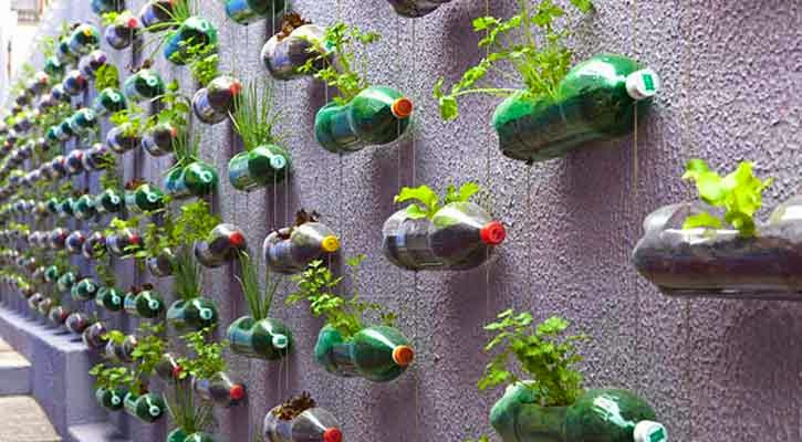 Plastic Coke Bottles cut and Hanged on wall as your mini Garden