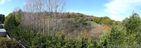The site of a proposed Character Residential Zone between Glenpark Place and Hikanui Drive, Havelock North, proposed by The Hidden Valley Ltd, photographed from Glenpark Place, Havelock North. photograph
