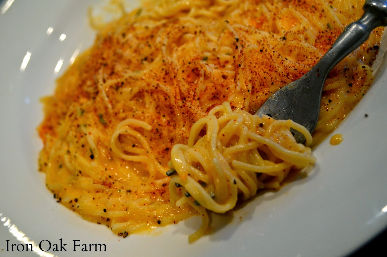 Iron Oak Farm: Roasted Sweet Potato and Rosemary Pasta