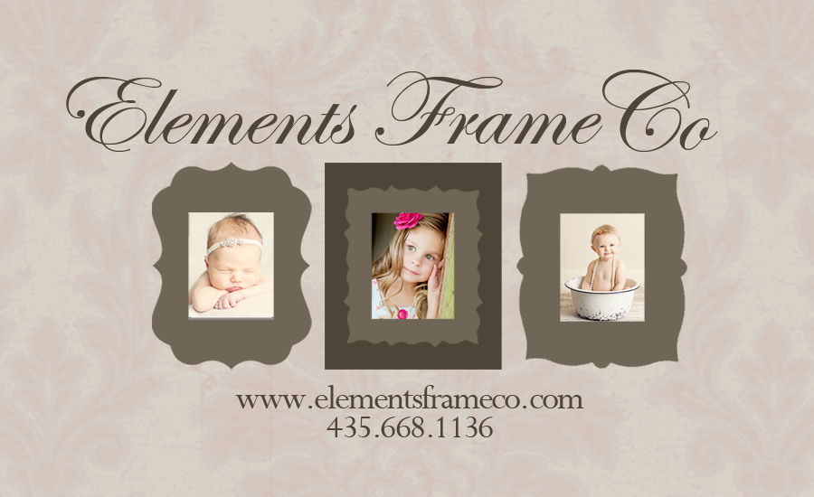 Elements Frame Company