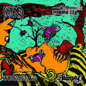 Insomnia / Napalmed - Split