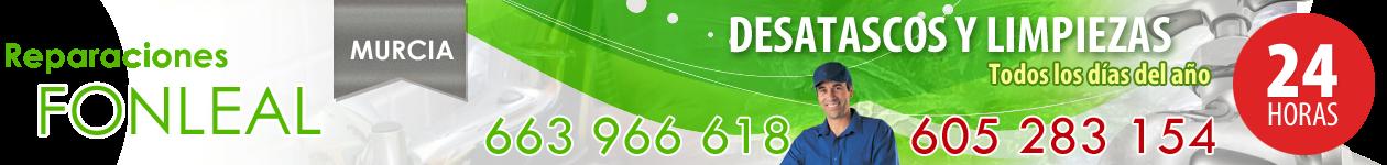 DESATASCOS EN MURCIA - 663 966 618 - FONLEAL. SERVICIO 24 HORAS