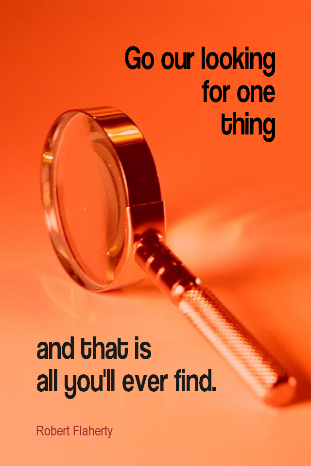 visual quote - image quotation for FOCUS - Go out looking for one thing and that is all you'll ever find. - Robert Flaherty