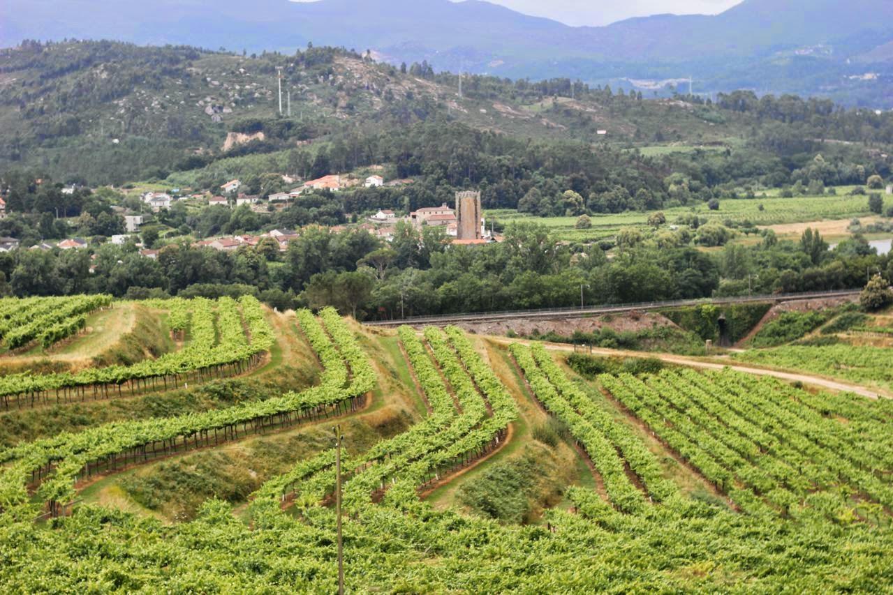 Resultado de imagen de Ruta do Viño Rías Baixas