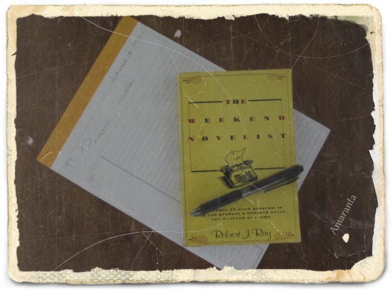 Comienzo de mi primera novela