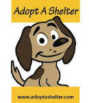 Adopt A Shelter